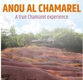 True Chamarel Experience